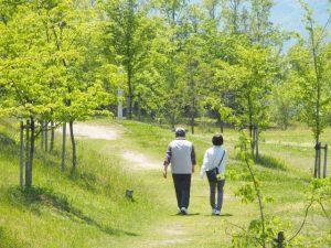 認知症予防に適した散歩